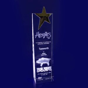 star trophy laser etched crystal 3d 270mm