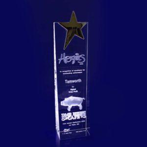 star trophy laser etched crystal 3d 270mm