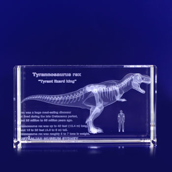 3d glass etched rectangle trophy